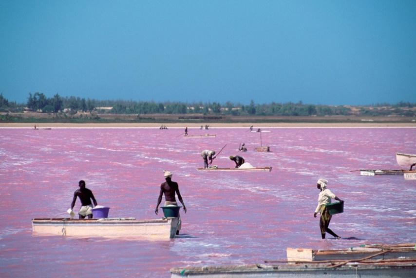 Visita al Lago Rosa | Blog Erasmus Dakar, Senegal